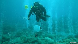 Diver in Sicily with CO2 vents